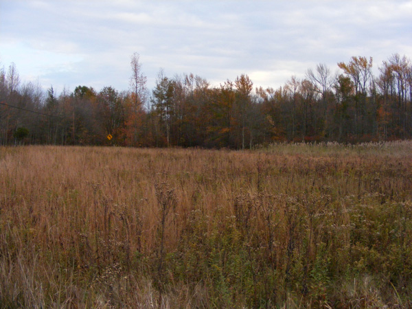 Great Swamp... and a sign