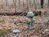 Hydrant in the woods