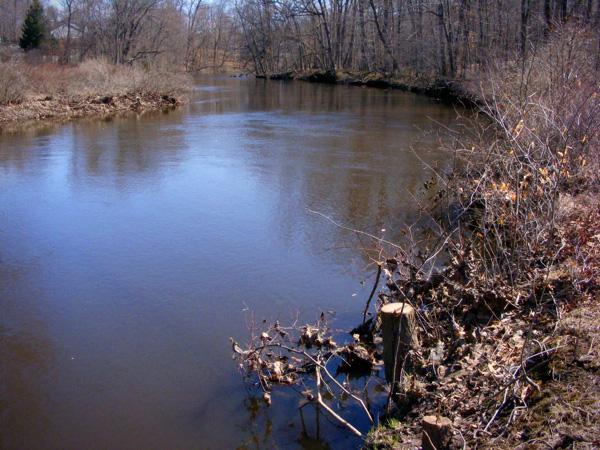 The mighty Passaic River! ...looks kinda puny.