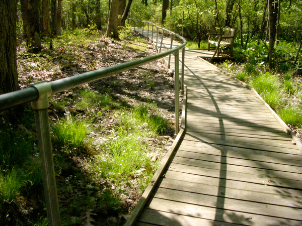 Great Swamp Outdoor Education Center Boardwalk!