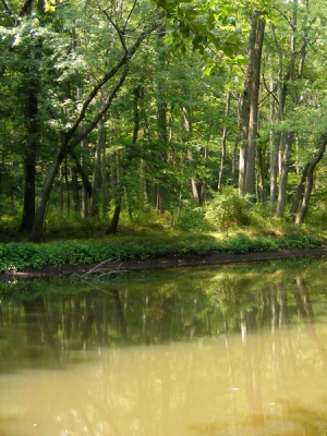 Passaic River, before Irene