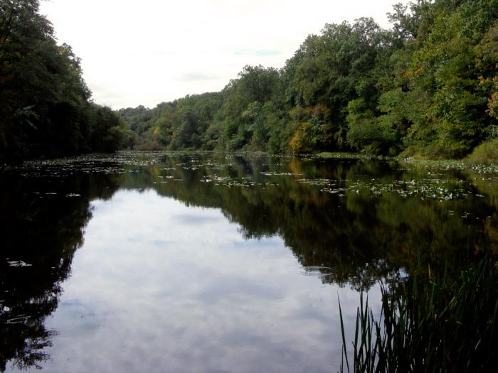 Lake Surprise, Watchung Reservation