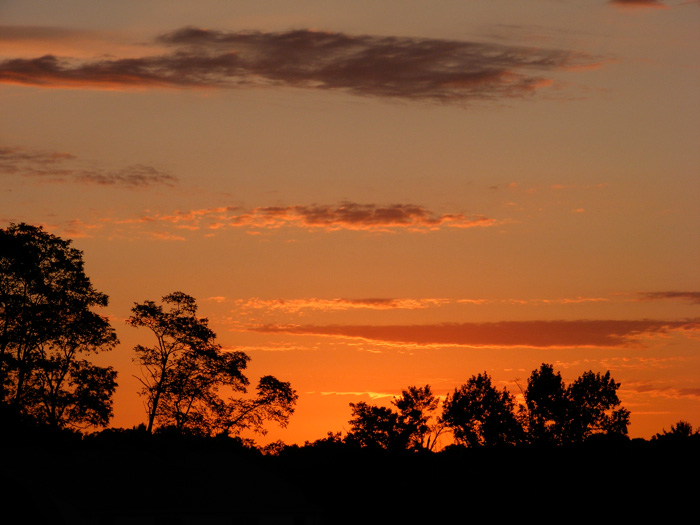 I like pretty sunrises!