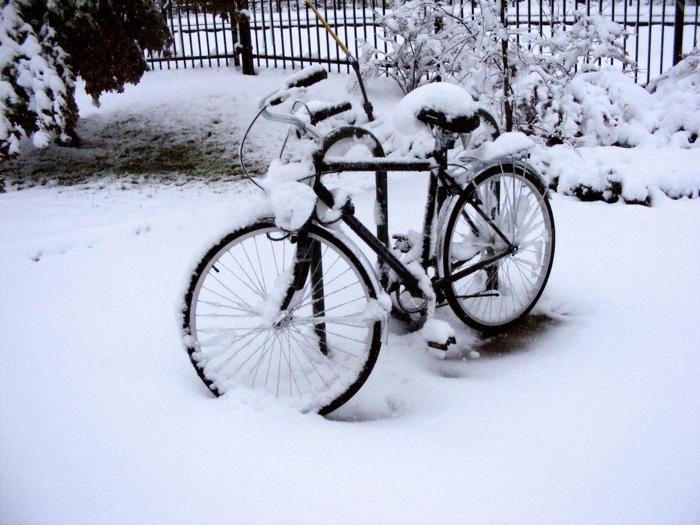 Poor bike. Poor owner.