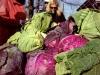 Farmers' Market 4!