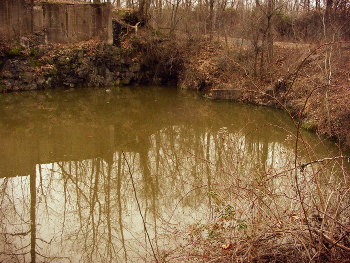 Pond in the ruins. Do you see the duck?