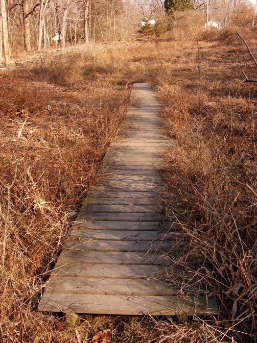 Passaic River walkway, winter 2012