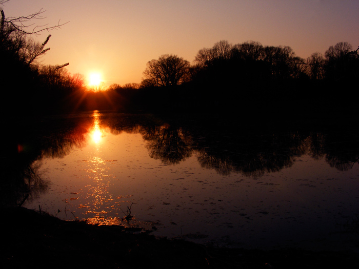 A generic sunset!