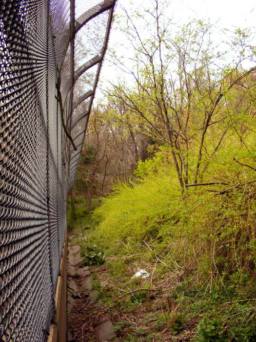 Tall grass and a fence? This is an overpass?