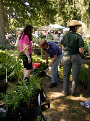 Gardeners, gardeners, everywhere!