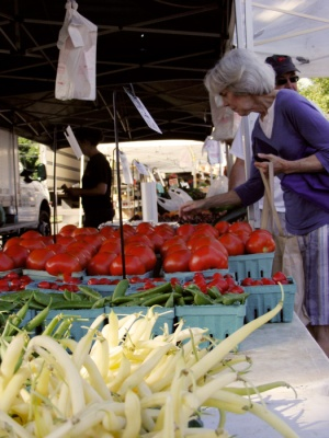 Picking tomatoes at the Scotch Plains farmer's market