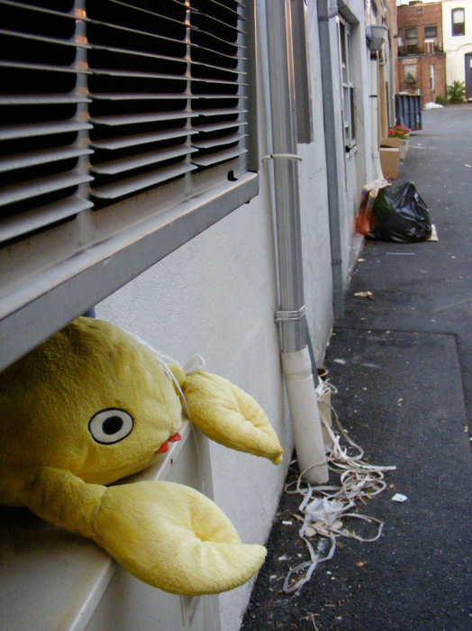 Just, y'know, a plush stuffed toy crab, hangin' out in an alley between two air conditioners. The usual.
