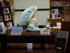 The Literary Shark