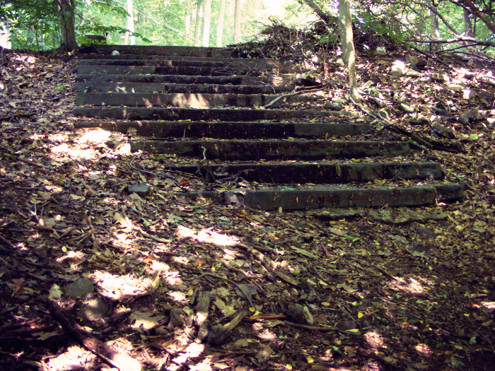 The steps!