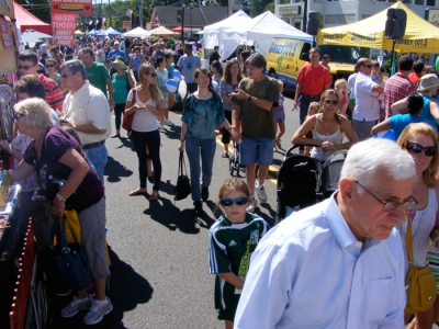 The crowd at the street fair