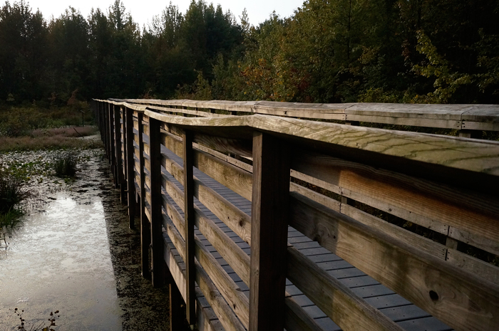 What's this? ANOTHER boardwalk in a swamp? Seriously? YES.
