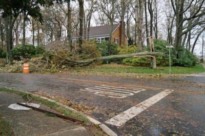 Stop sign is down. Oh and also a giant tree. Thank goodness it missed the house!