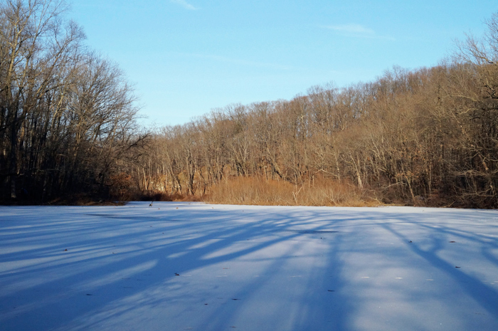 Seeley's Pond frozen solid