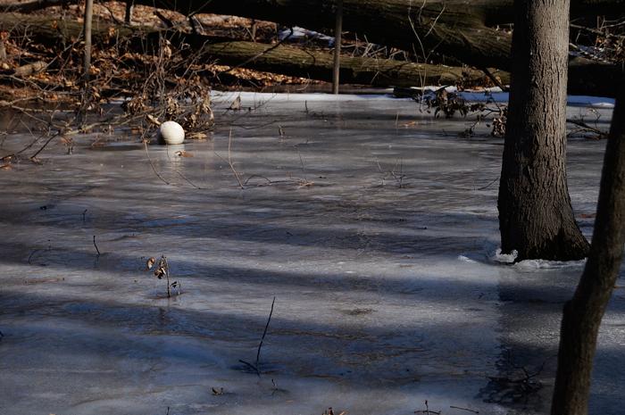 A frozen volleyball omg